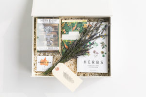 my-bees-box-winter-2018-12